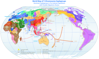 Haplogroups - SNPedia